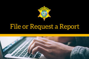 File or Request a Report